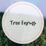 Corona Area's Guide to Tree Farms 2019