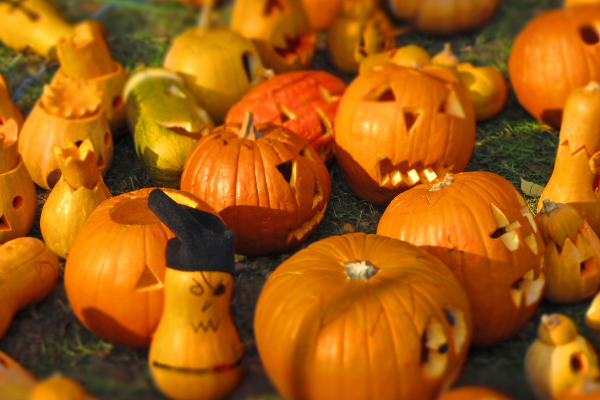 orange railway museum pumpkin