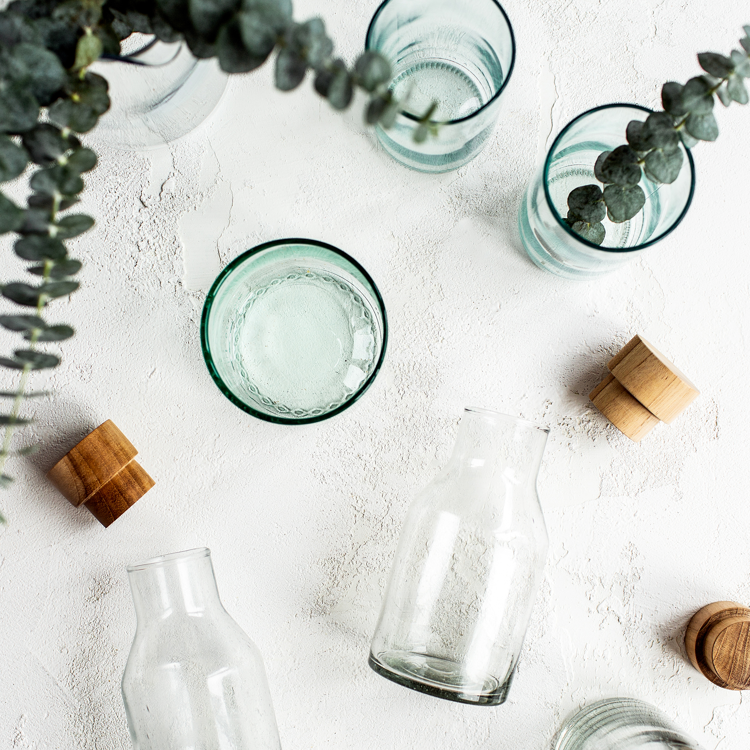 green glasses with plants | tips on how to go green