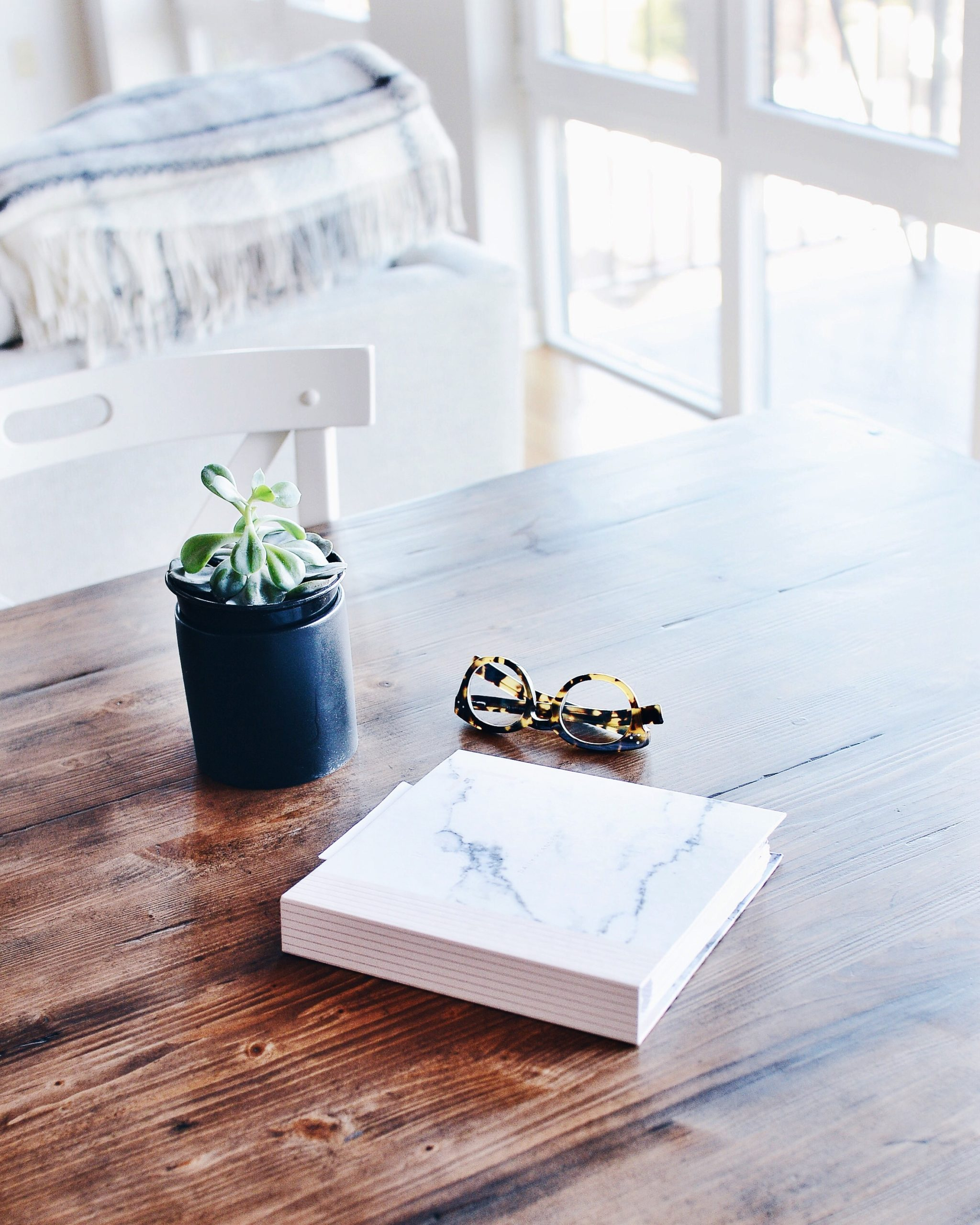 plant, book and glases on kitchen table
