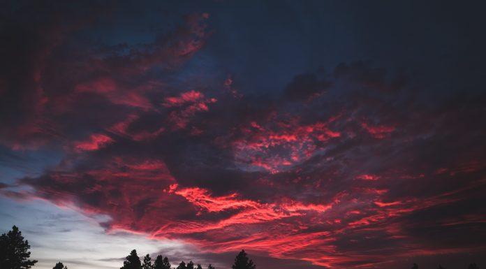 sunset sky over trees