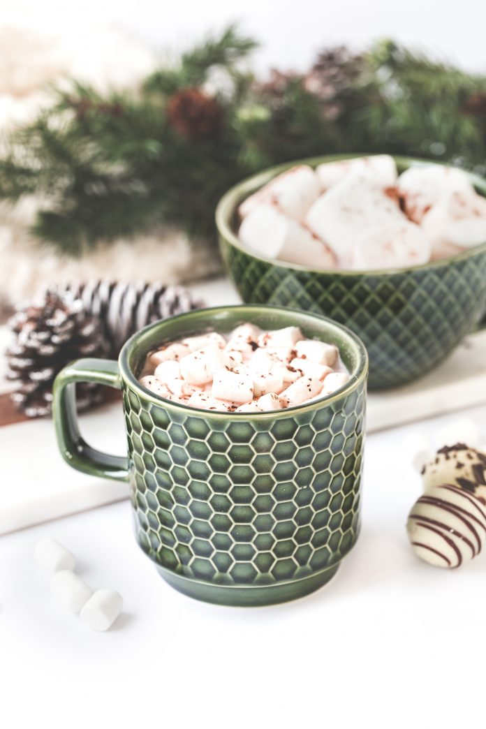 hot coco cup with marshmellows