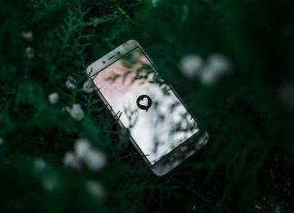 phone in trees with a heart in the inland empire